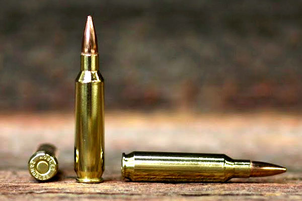 Best AR Hunting Rifle Chambers - Cartridges - Ammuntion